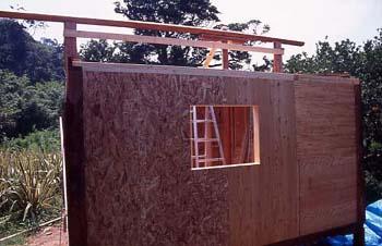外壁構造用合板